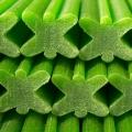 denta-star-bowwow-spinat-und-minze-pfotenoase