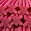 rote-beete-denta-star-bowwow-pfotenoase